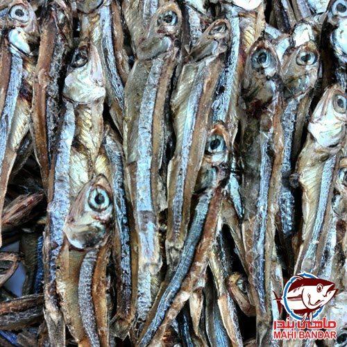 ماهی متو